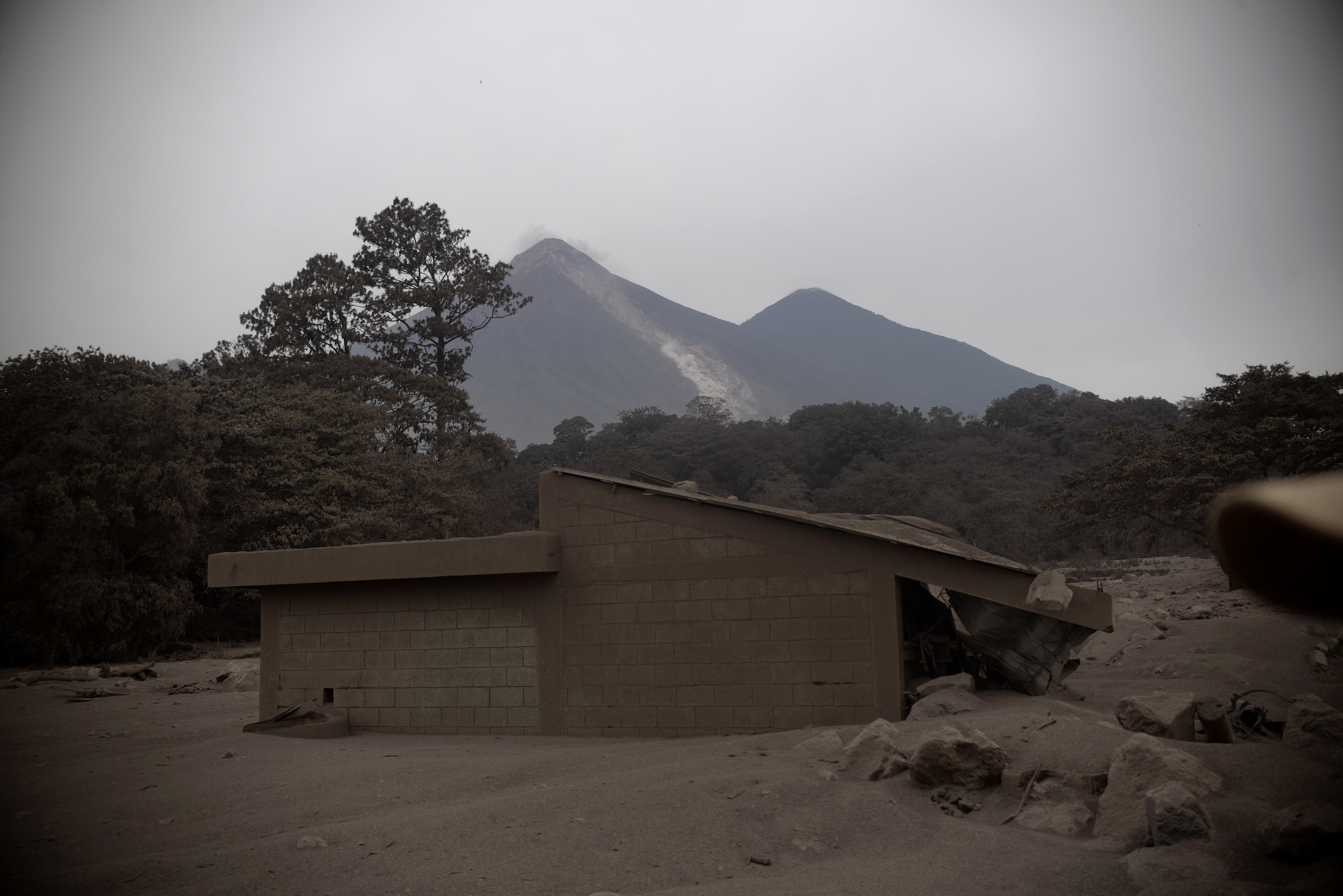 Ceniza volcánica mata producciones agrícolas