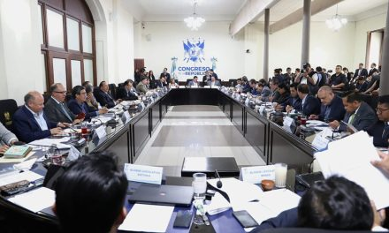 Plan de austeridad de diputada Vicenta Jerónimo incomoda a jefes de bloque
