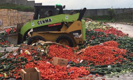 Centros de Acopio: un plan para alargar la vida a los alimentos y evitar su pérdida