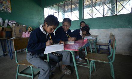 Ciclo escolar 2020: aprobarlo depende de una prueba diagnóstica