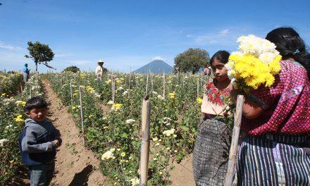 Guatemaltecos en EE.UU quieren invertir en proyectos de desarrollo en sus comunidades