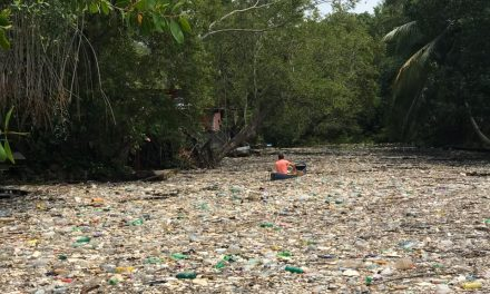 Las bardas de Jimmy Morales no funcionaron: la basura sigue llegando al mar en Honduras